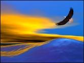 Meditacao-Da-Aguia[1]