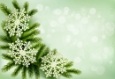 Christmas green background with christmas tree branches and snowflakes. Vector illustration.
