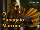 Papagaio_marrom_pe_Leo