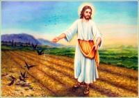 Jesus o Semeador
