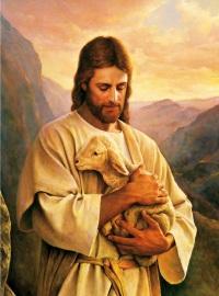 Jesus_ovelhinha