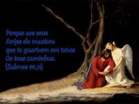 ANJO ACOLHE JESUS