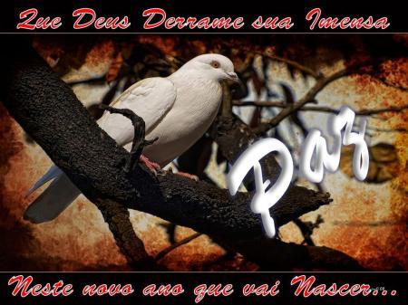 pomba-da-paz-2009