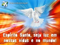 Pomba RCC Brasil Pentecostes