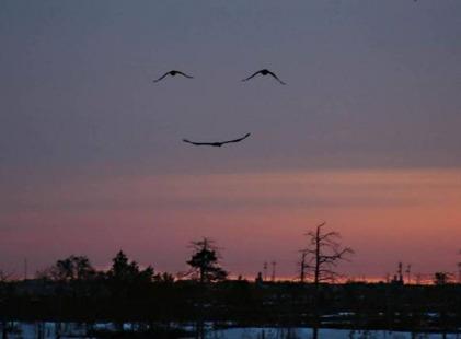 O_Sorriso_de_Deus