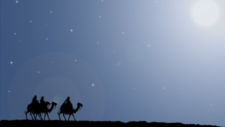 camel-graphics-night-stars-3d-1350x2400
