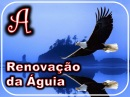 renovacao_da_aguia