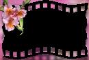 Moldura_film_orquidea_lilas