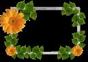 Moldura_Flores_Flowers_frame