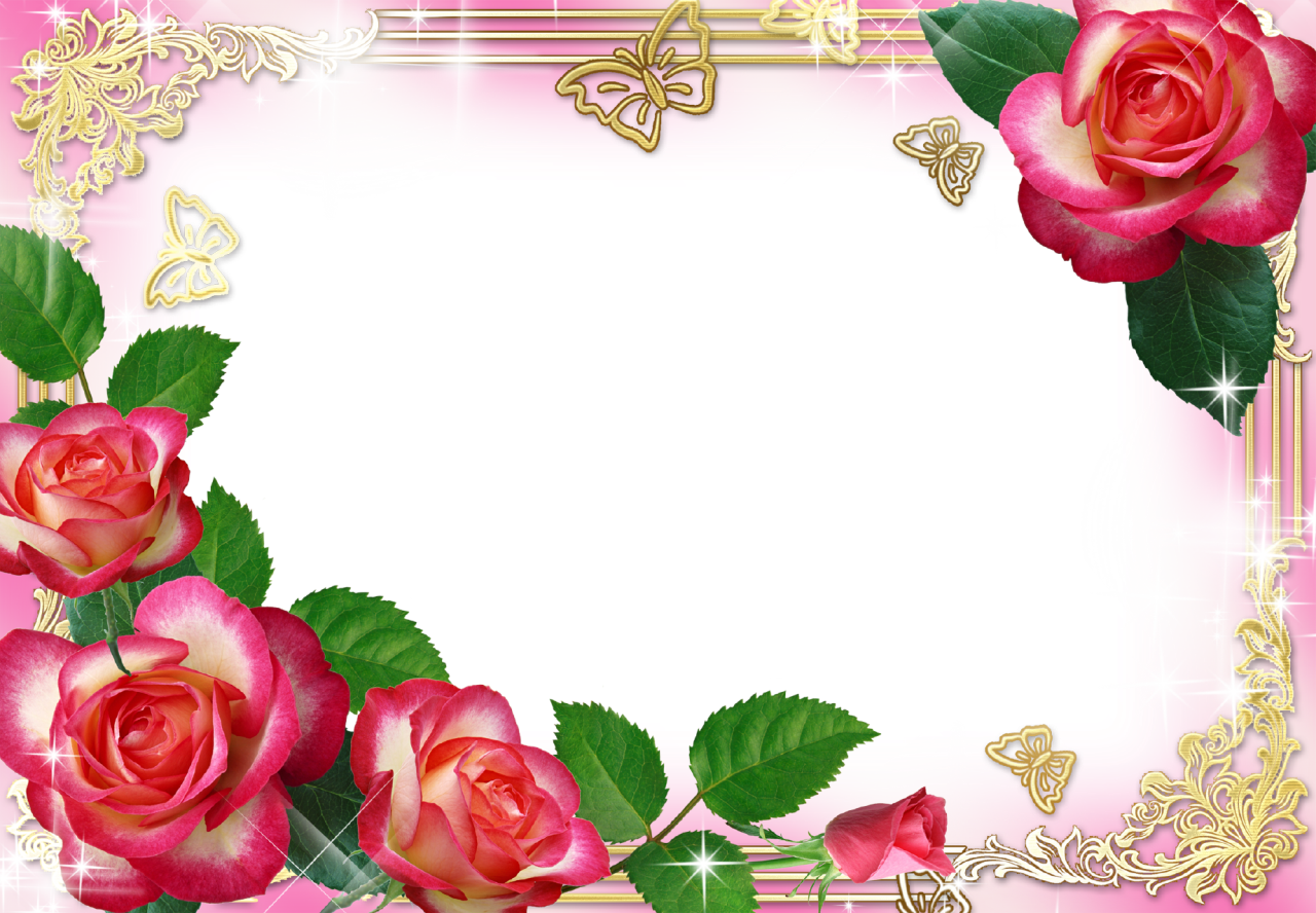 The Gallery For Gt Rose Flower Frame Png