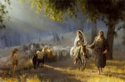 countdown-to-christmas-journey-to-bethlehem