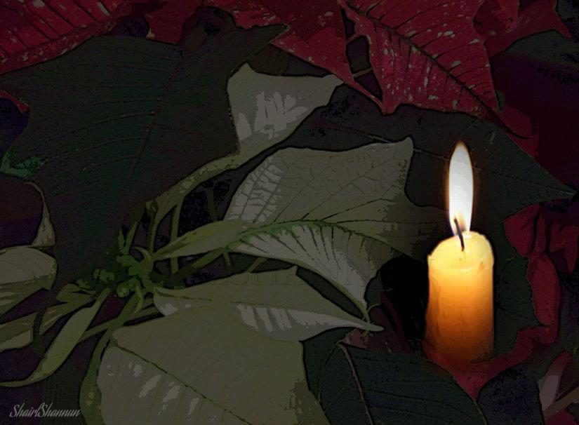 148808__christmas-prayer_p