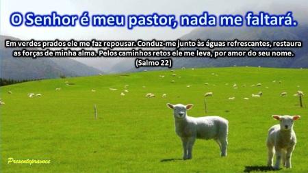 Meu Pastor