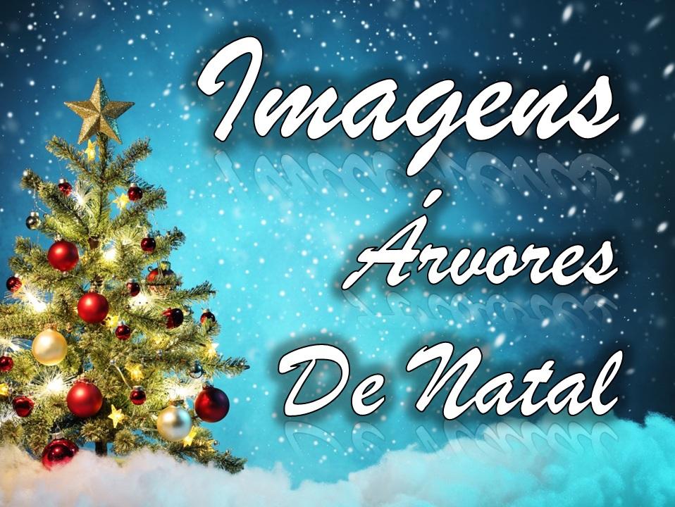 Imagens_arvores_de_Natal