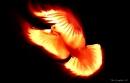 holy_spirit_2831020091