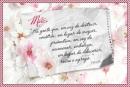 Moldura_mwnsagem_mae_valoriza