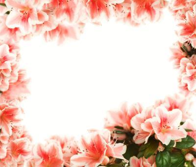 Moldura_cartao_flores_Amor_Namorados