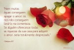 canticos_8_7_aguas_apagar_amor_riquezas_sua_casa